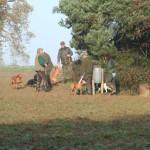 Getting into gundog fieldwork