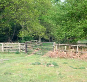 How to find land for gundog training