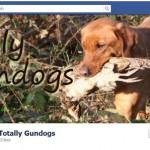 Totally Gundogs is on Facebook!