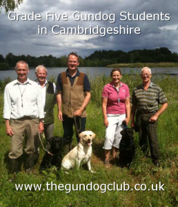 gundog field tests