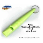 Basic equipment for gundog training