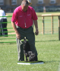 ian openshaw gamefair demonstration